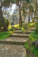 Ascending stone stairs surrounded by huge green tree and grass at a public natural park in spring time, Buyukada Island (Princes island), Istanbul, Turkey
