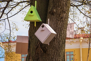 Small wooden houses for birds on a tree in city park