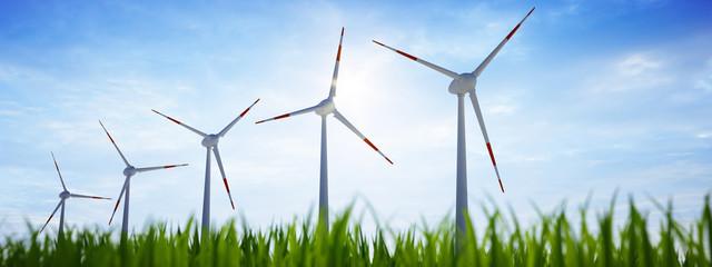 5 Windräder mit Gras