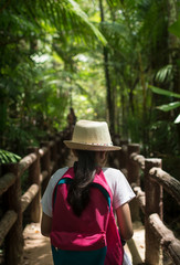 Girl with backpack walking in to tropical rainforest.