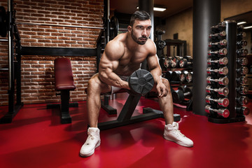 Bodybuilder workout for biceps with dumbbells in a small fancy gym.