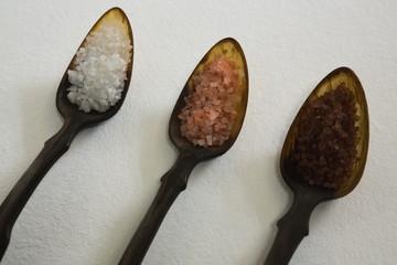 Various types of sea salt in a spoon