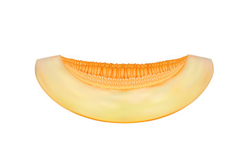 a piece of melon vector