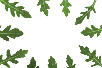 frame of green fresh rucola or arugula leaf isolated on white background with copy space for your text. . Top view