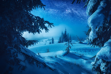 The valley covered with fresh snow in a light of moon