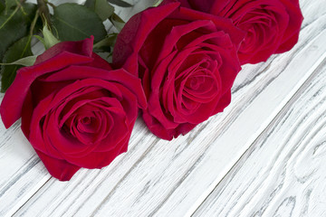 Three red roses on white wooden background.