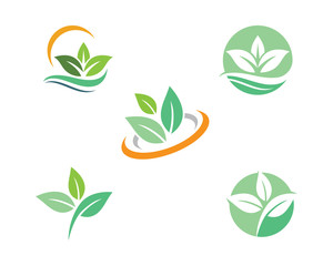 Tree leaf ecology nature element vector icon