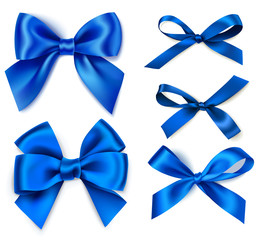 Set of beautiful blue bow isolated on white background. Winter holiday decoration. Vector collection