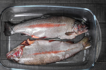 raw trout, fish in a glass  baking dish top view