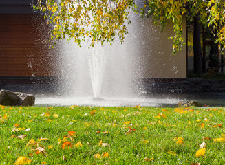 Lawn with fallen leaves against of fountain and birch branches