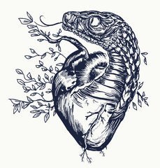 Snake and heart tattoo. Symbol of love, envy, evil. Snake the tempter twists human heart, t-shirt design