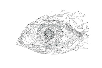 Eye low poly wireframe isolated black on white background. Abstract mash line and point origami. Vector polygon illustration. Technoligy eyes with geometry triangle. Light connection digital structure