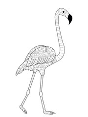 Flamingos coloring raster for adults