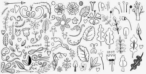 Hand drawn vintage floral design elements