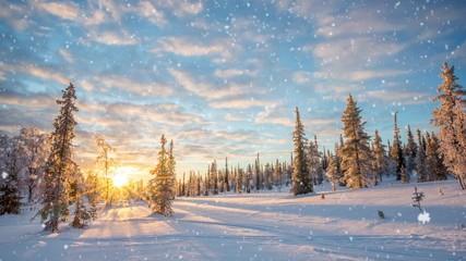 Wall Mural - Seamless loop - Snow falling on a winter landscape at sunset, Saariselka, Lapland, Finland, video HD