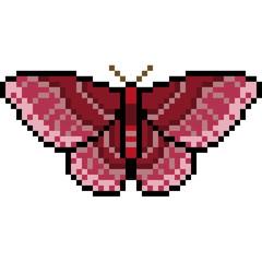 vector pixel art insect moth