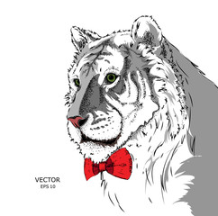 Portrait of a tiger with tie and in the glasses. Can be used for printing on T-shirts, flyers and stuff. Vector illustration