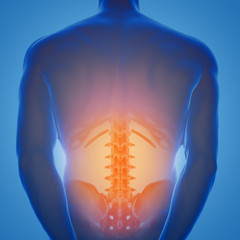 3d rendering of human male lower back with pain zone