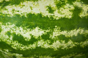 Watermelon skin texture