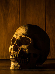 The skull is placed on a wooden table. The background is a wooden plate and light from the candle to the skull.