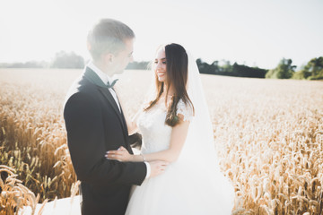 Beautiful wedding couple, bride and groom posing on wheat field with blue sky