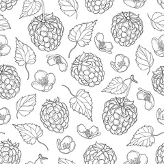 Vector seamless pattern with outline Raspberry with berry, flowers and foliage in black on the white background. Floral background with Raspberry in contour style for summer design and coloring book.