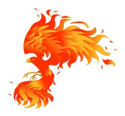 phoenix bird on fire