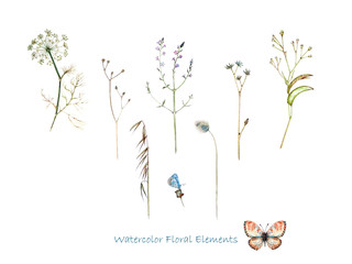 Isolated floral elements and butterflies in watercolor for decoration of each type.