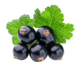 black currant with green leaf isolated on white