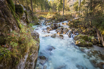 Magical Forest at Lake Hintersee with Creek Ramsauer Ache - HDR image. National Park Berchtesgadener Land, Germany.