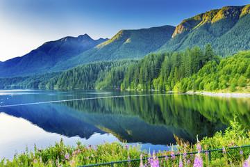 Capilano Reservoir Lake Green Mountains Vancouver British Columbia Fototapete