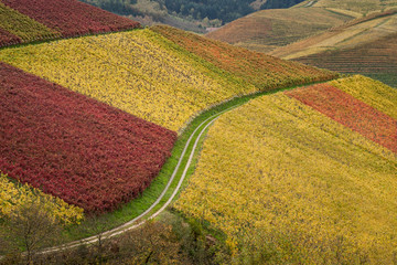 Herbstreben