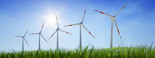5 Windräder mit Wiese