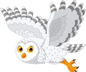 Vector illustration of cartoon snowy owl flying isolated on white background