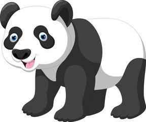 Vector illustration of funny panda cartoon isolated on white background