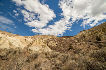 Badlands formations and sagebrush under a desert sky