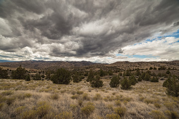 Heavy overcast clouds and juniper plain