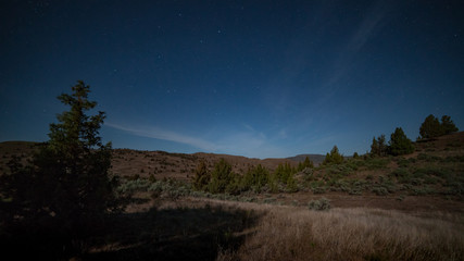 Desert sagebrush and juniper landscape by moonlight in the great basin