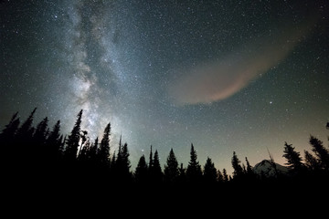 Galaxy rises over dark forest and Mount Hood