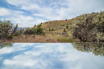 Eternal Photo to sagebrush reflection blue sky mirror desert