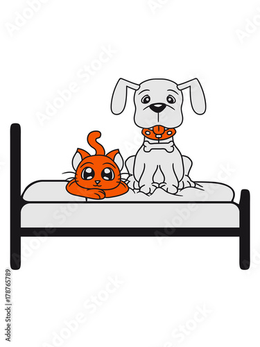 Team Paar Freunde 2 Katze Kater Katzchen Bett Schlafen Bequem