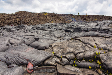 Forming pillow lavas on Hawaii