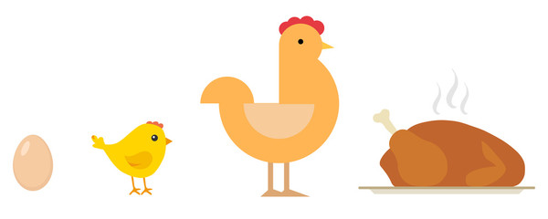 Egg, chick, chicken, baked chicken on tray. Life cycle of the chicken.