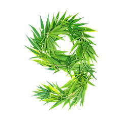 Number nine made from green cannabis leaves on a white background. Isolated