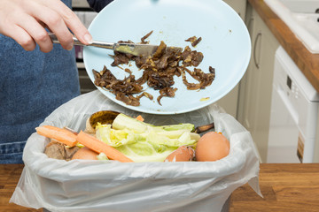 Leftovers from Plate Thrown into Bin Filled with Food Scraps