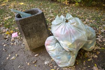 Garbage bags in the park near bin