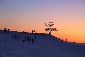 Silhouette of photographers taking picture under big tree in sunset at Lake Baikal, Olkhon island, Siberia in Russia. Winter time