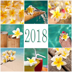 2018, swimming pool and plumeria collage