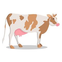 Cute Cow Grown on Farm Isolated Cartoon Illustration