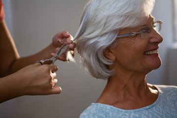 Cropped hands of hairsylist cutting hair of senior woman